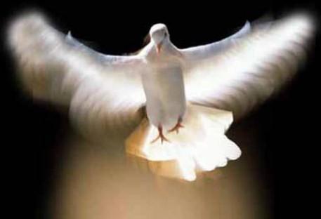 Qual é a tarefa do Espírito Santo?