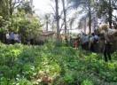 CAPA e o Sínodo Uruguai realizam Seminários da Agricultura Familiar