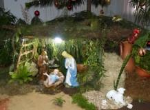 Comunidade Cristo Salvador da Barra do Rio Cerro preparou Presépio