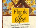 Flor de Ipê: Experiências, orações, e bênçãos para consolo e fortalecimento de pessoas enlutadas