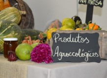 Comida Boa na Mesa - Ciranda da agroecologia