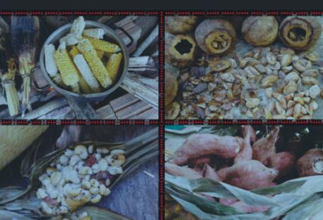 Livro Alimentação Karo Arara: Saberes e Práticas Karo at wiri kanã: mabexép kanã