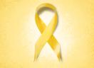 Consolo na Esperança, Prevenção ao Suicídio