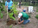 CO2 do Concílio é compensado com plantio de árvores