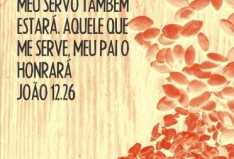 Da semente até a boa colheita - meditação em três partes (João 12.23-26) – Parte 3