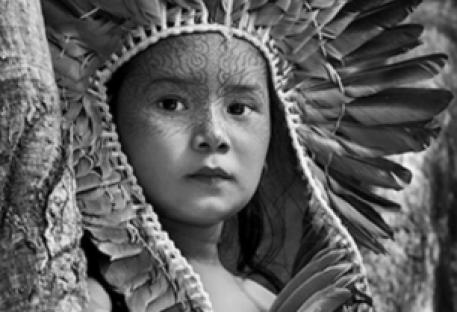 À Nina, da Amazônia                                        e todas as crianças do mundo
