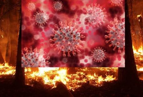 Contra a espiritualização do novo Coronavírus e das queimadas