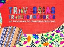 Travessias Transformadoras no Programa de Pequenos Projetos