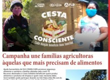 O Recado da Terra. Número 50, primavera de 2020 - Campanha une famílias agricultoras àquelas que mais precisam de alimentos