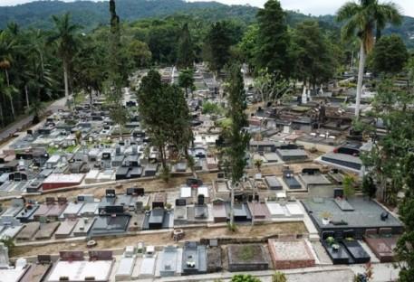 Blumenau Centro arboriza o cemitério com mais de 160 mudas