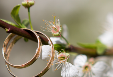 O casamento - Marcos 10.2-12